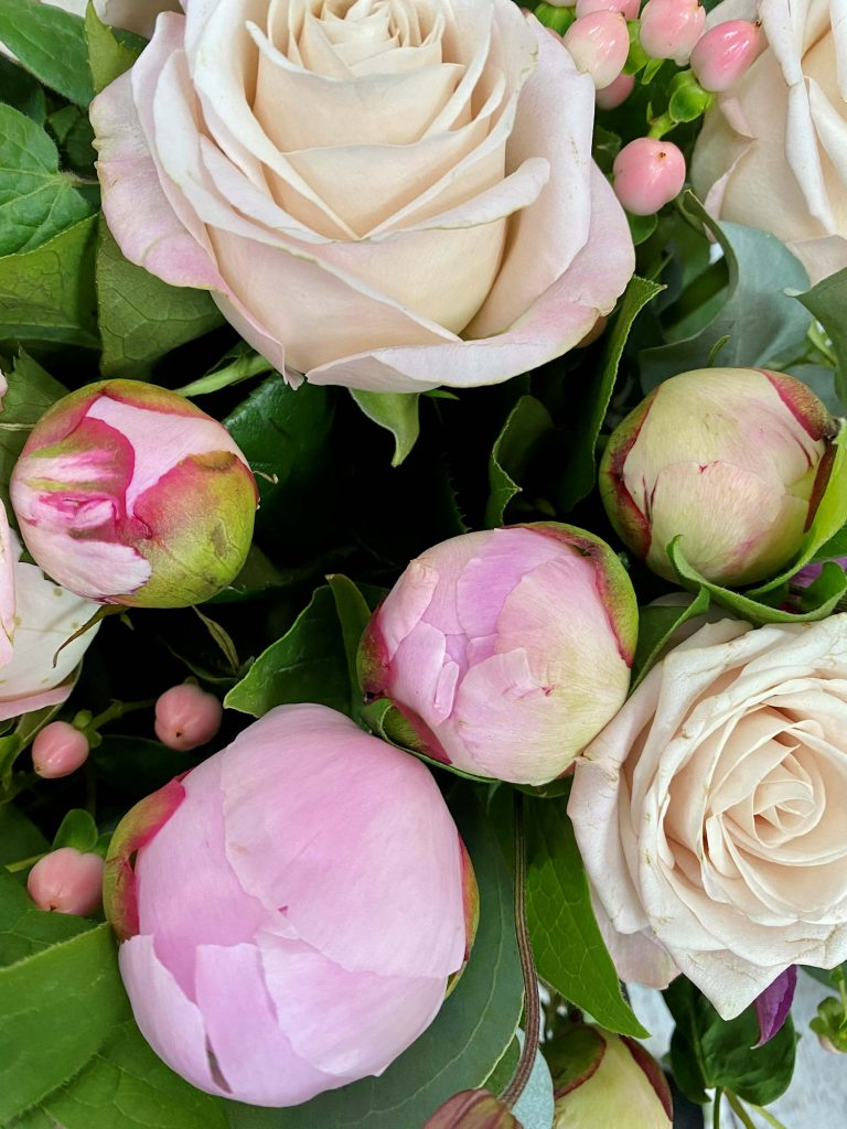Peonies for sale